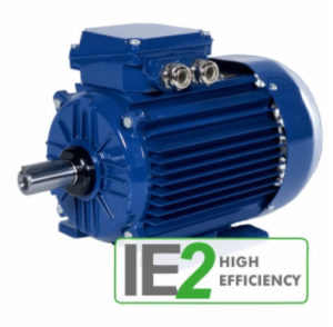 IE 2 Induction Motor